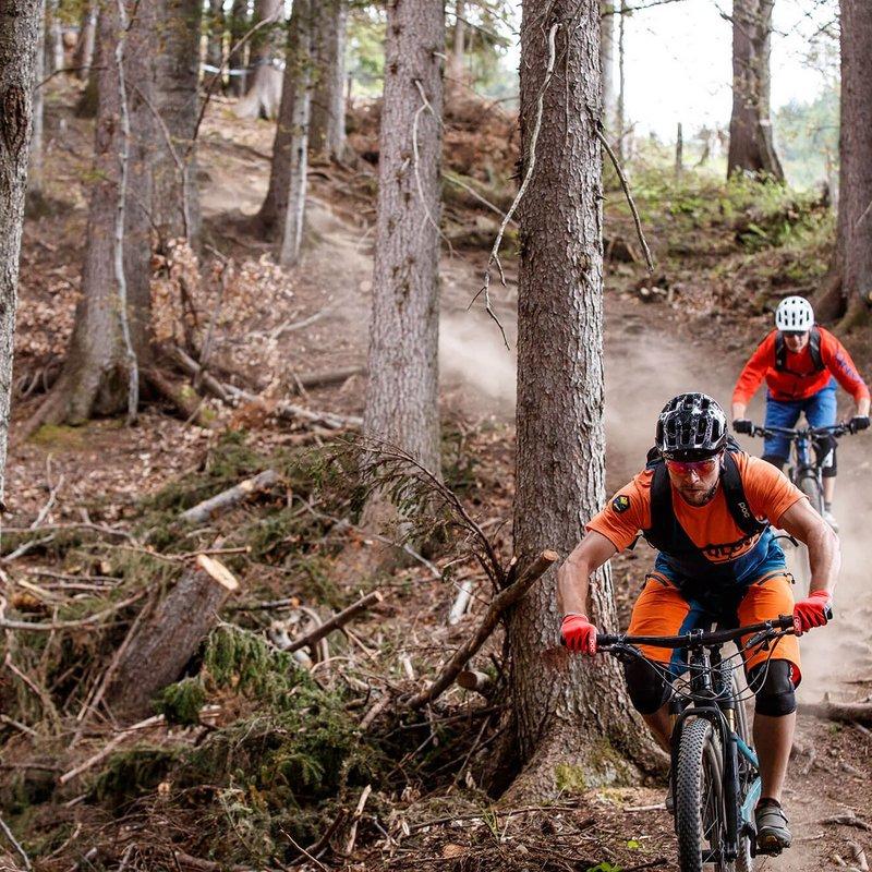 Peter Sagan Trail