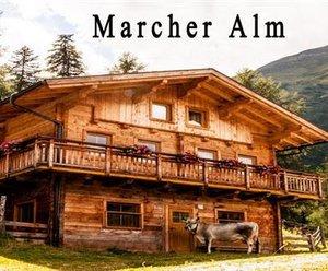 Marcher Alm / Grosslercherhof