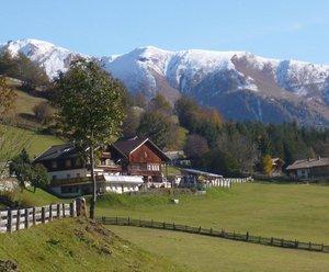 Biobauernhof Berger-Veidlerhof