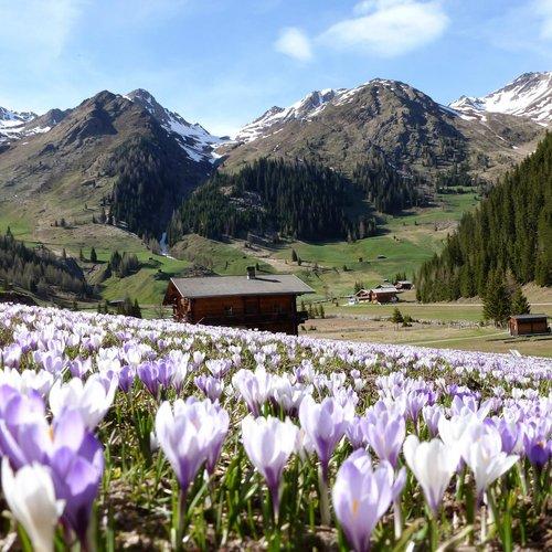 Osttirol zum Verlieben, Kollreider Suite
