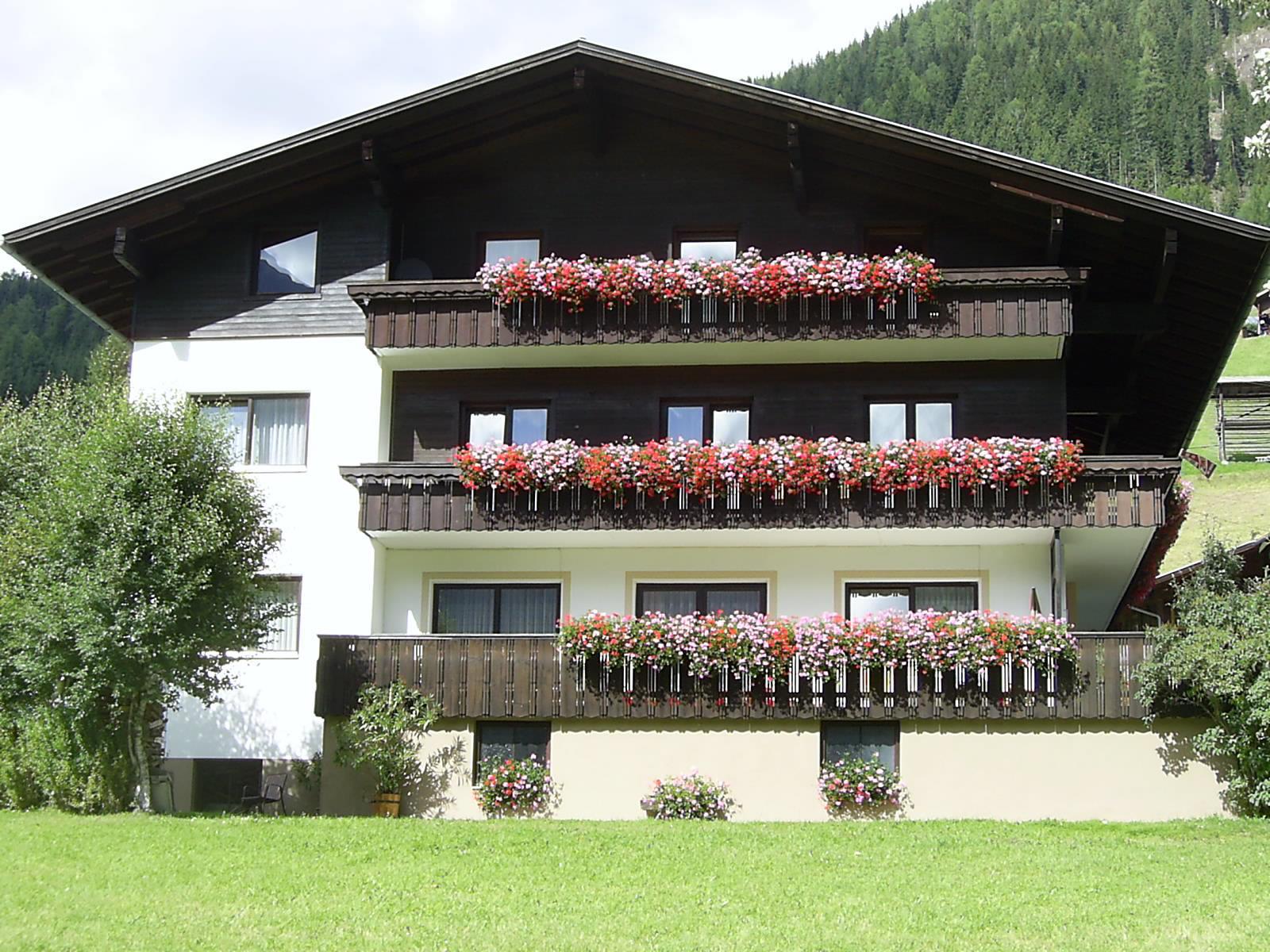 Alpina-Sommer.jpg