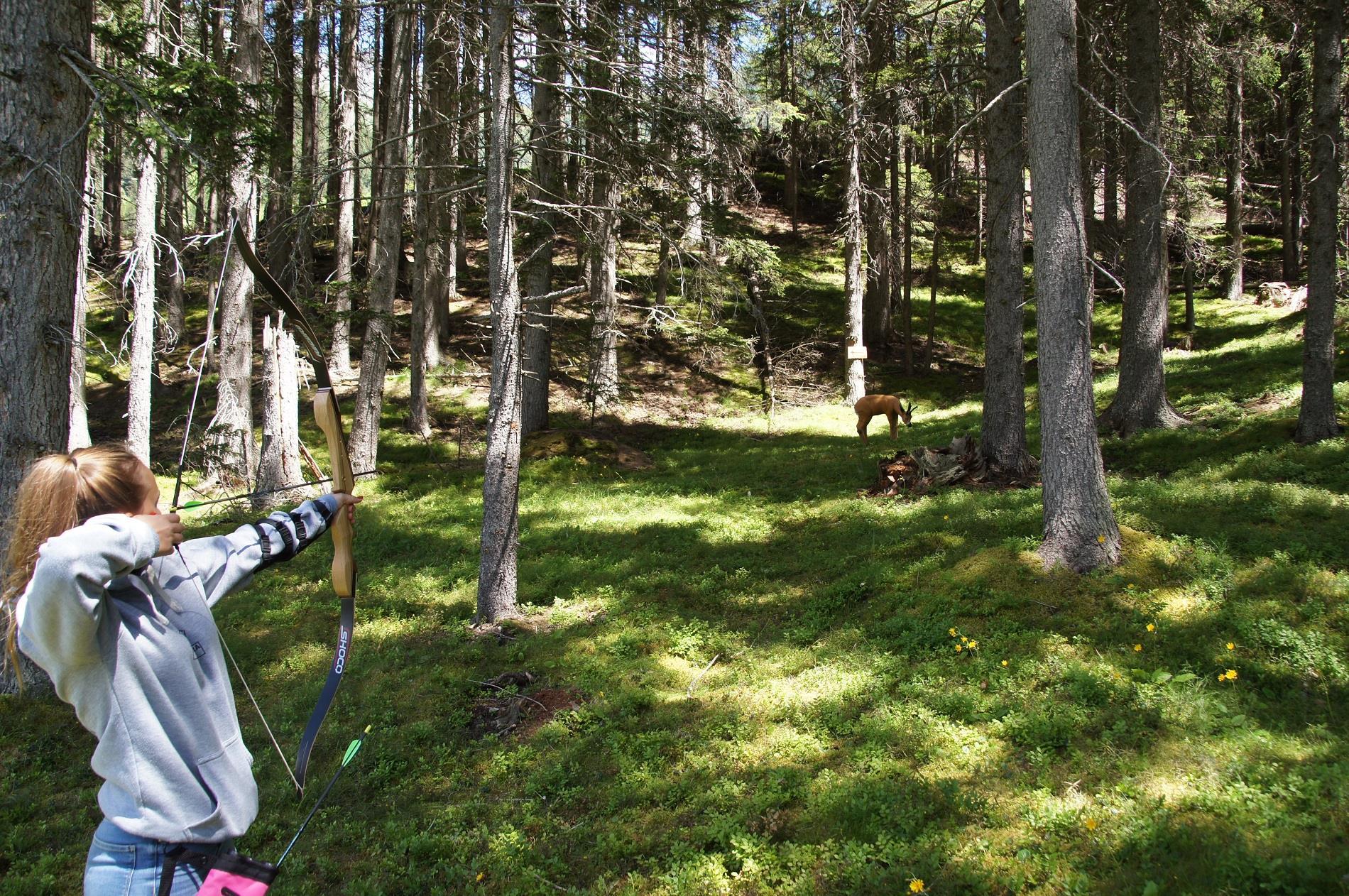 Bogenparcours-Hood-Wood-Sommer.jpg