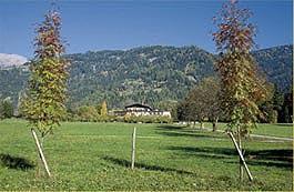 Haidenhof-Aussen.jpg