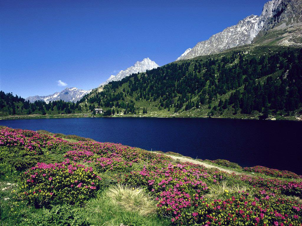 Obersee-am-Staller-Sattel.jpg