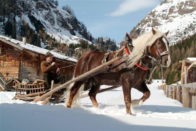 Pferdekutschenfahrt.jpg