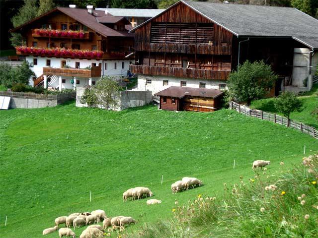 Ruggenthalerhof-Matrei-in-Osttirol.jpg