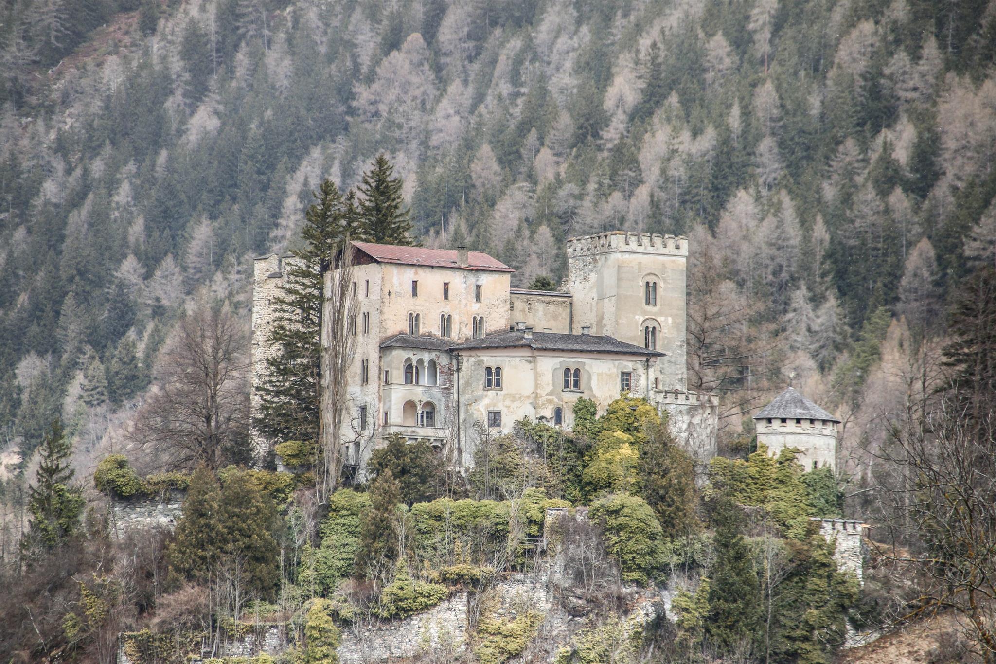 Schloss-Weissenstein3.jpg