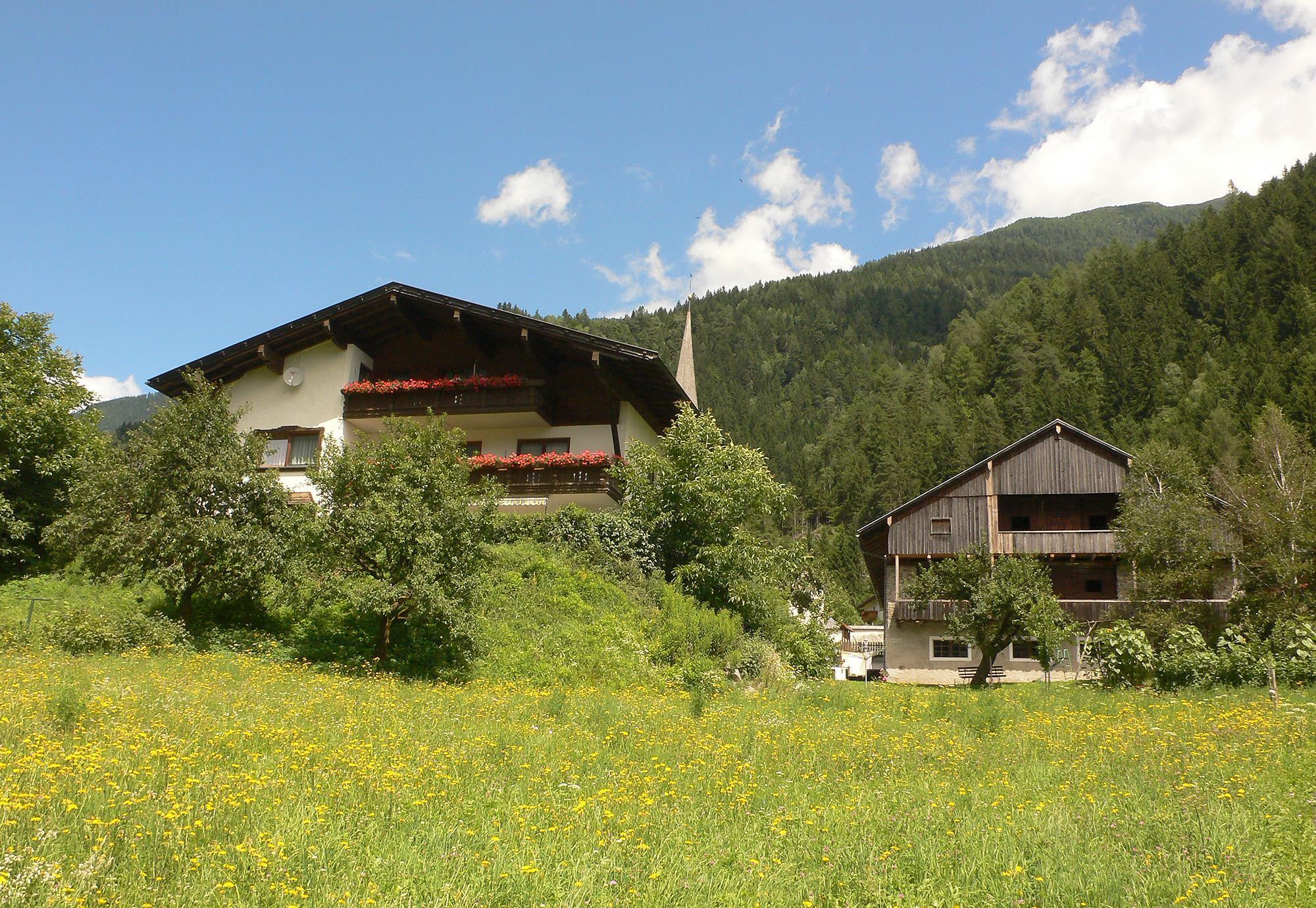 Steinerhof-im-Sommer.jpg