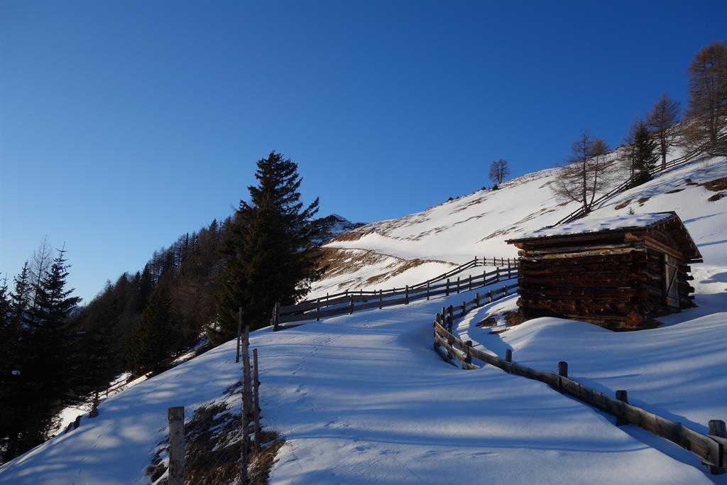 Winter-auf-der-Alm.jpg