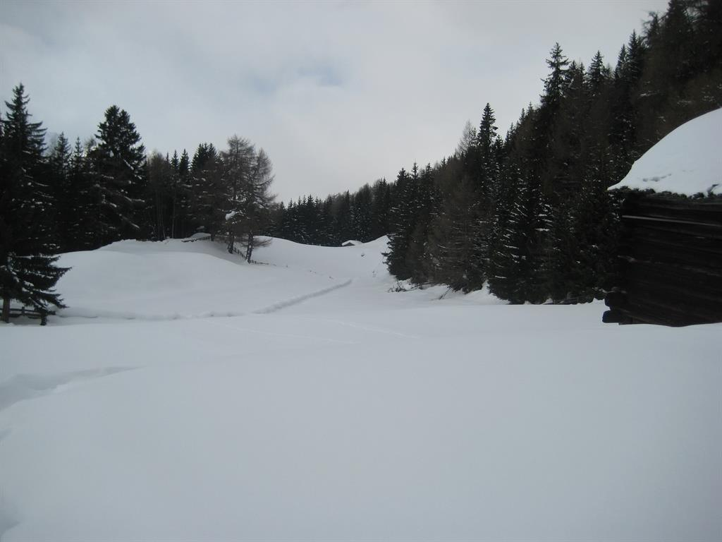 Winterstimmung-im-Paradies.jpg