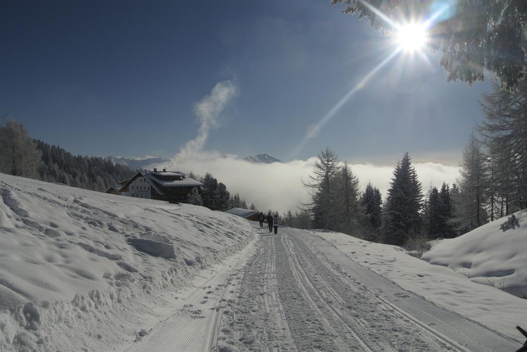 Zum-Alpengasthof-Bidner-im-Winter.jpg