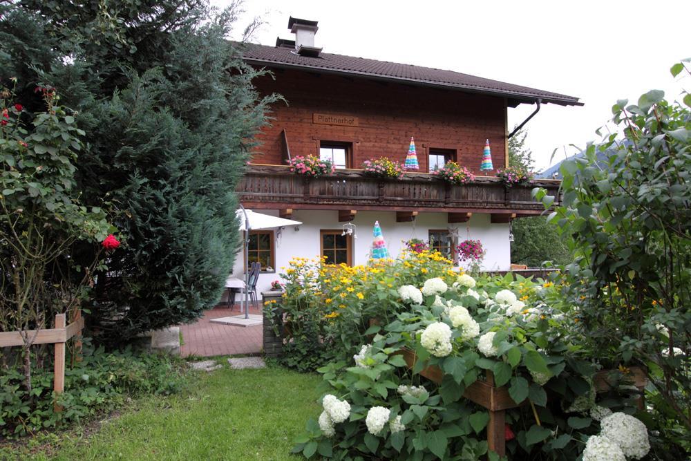 plattnerhof8960.jpg
